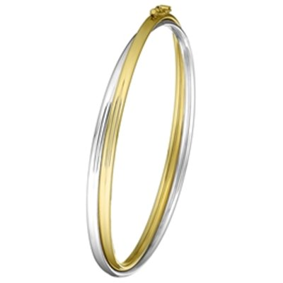 14 Karaat bicolor bangle armband